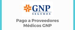 Pago a Proveedores Médicos GNP