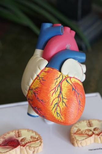 ¿Cuánto gana un cardiólogo en México?